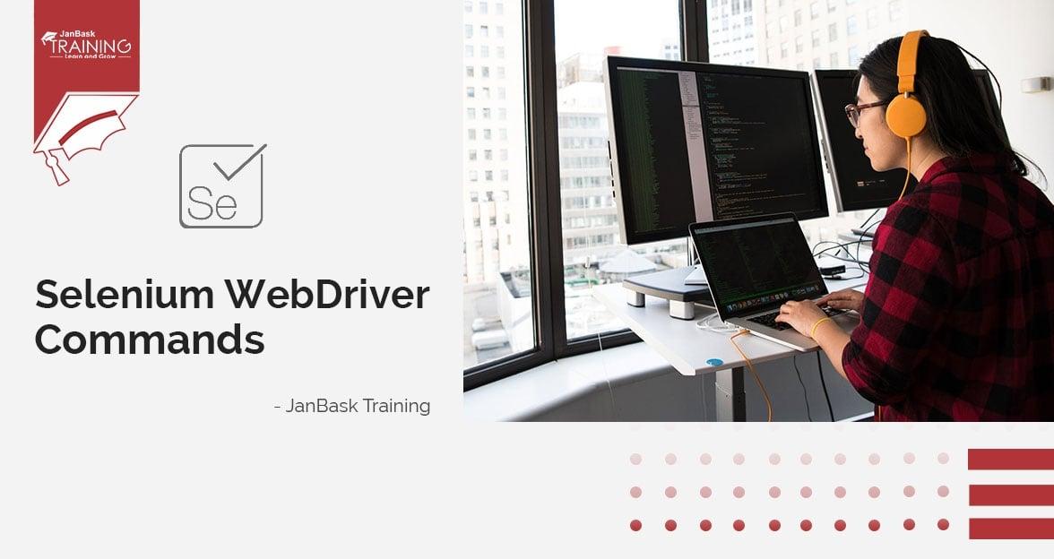 Different Selenium Web Driver Commands